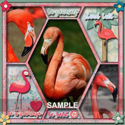 Flamingo_lindamm