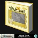Mellow_yellow_photobook-001a_small