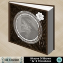 Shades_of_brown_photobook-001a_small