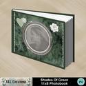 Shades_of_green_11x8_photobook-001a_small