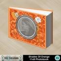 Shades_of_orange_11x8_photobook-001a_small