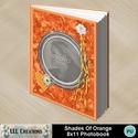 Shades_of_orange_8x11_photobook-001a_small