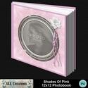 Shades_of_pink_photobook-001a_small