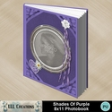 Shades_of_purple_8x11_photobook-001a_small