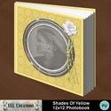 Shades_of_yellow_photobook-001a_small