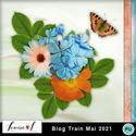Louisel_blog_train_mai2021_small