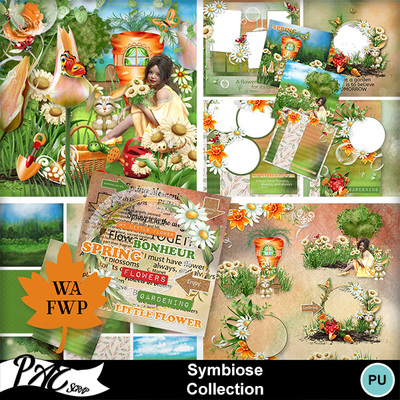 Patsscrap_symbiose_pv_collection