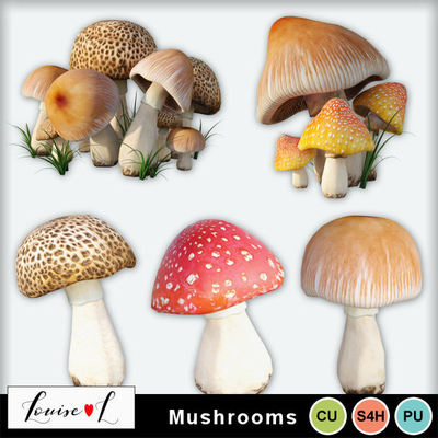 Louisel_cu_mushrooms_preview