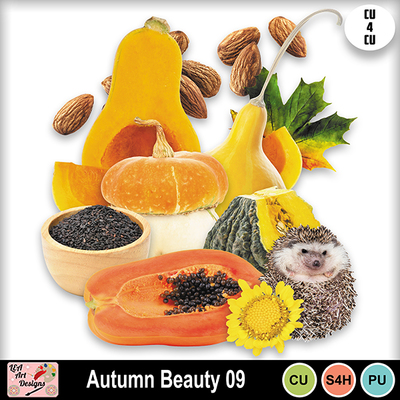 Autumn_beauty_09_preview
