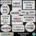 Dream_wedding_word_art-01_small