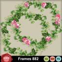 Frames_882_small