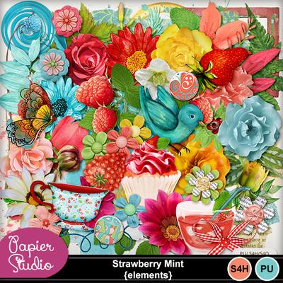 Strawberry_mint_el_pv