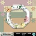 Spring_cracked_frame_mini-01_small