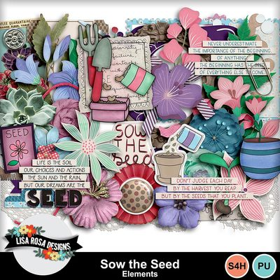 Lisarosadesigns_sowtheseed_elements