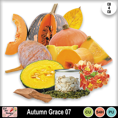 Autumn_grace_07_preview