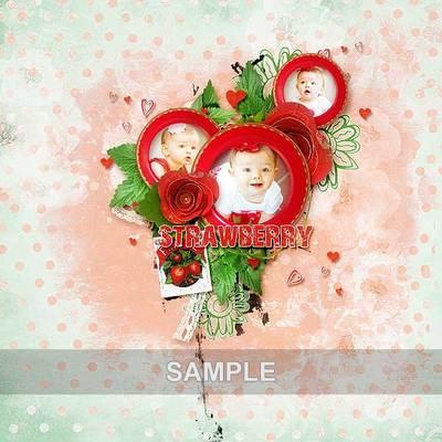 Bds_strawberry_ex2_memo