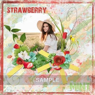 Bds_strawberry_ex3_memo