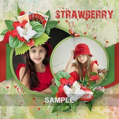 Bds_strawberry_ex4_memo
