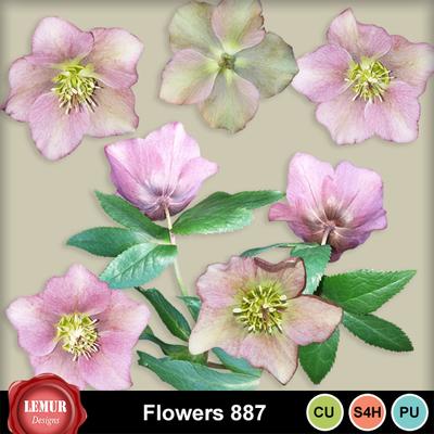 Flowers887