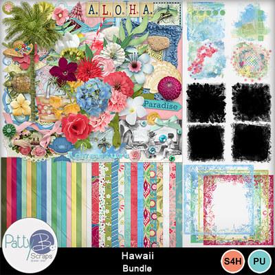 Pbs_hawaii_bundle
