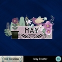 May_cluster-01_small