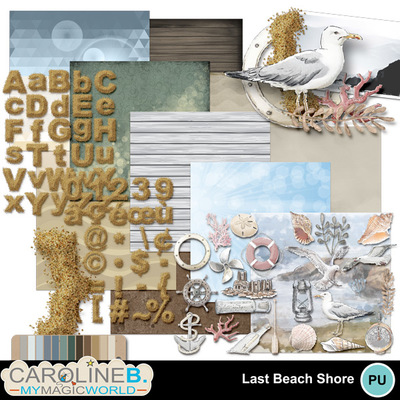 Lastbeachshore_collection_1