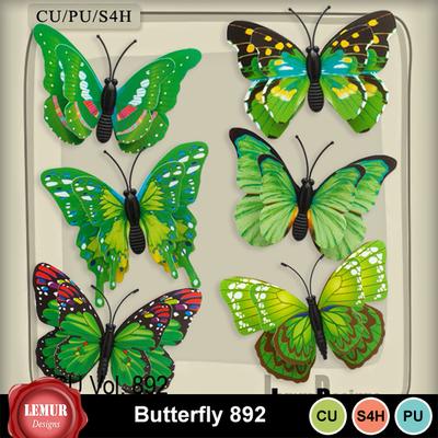 Butterfly_892