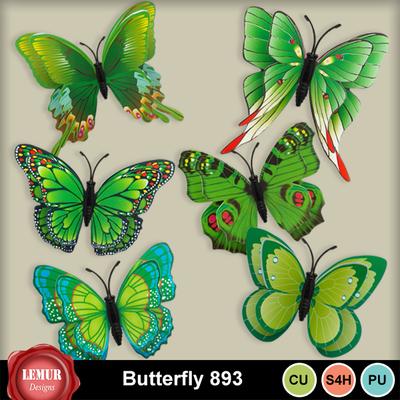Butterfly_893