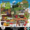 Pv_barbecueseason_elements_small