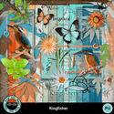Kingfisher3_small