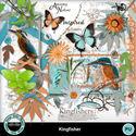 Kingfisher1_small
