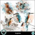 Kingfisher5_small