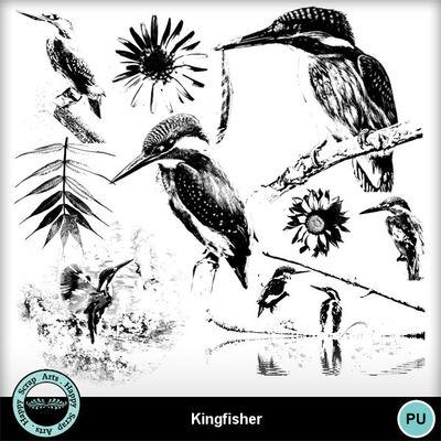Kingfisher6