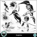 Kingfisher6_small
