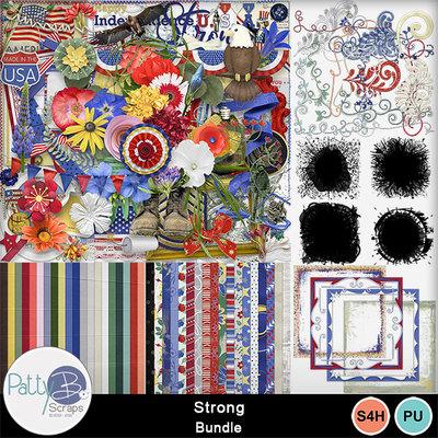 Pbs_strong_bundle