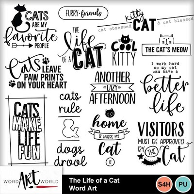 The_life_of_a_cat_word_art