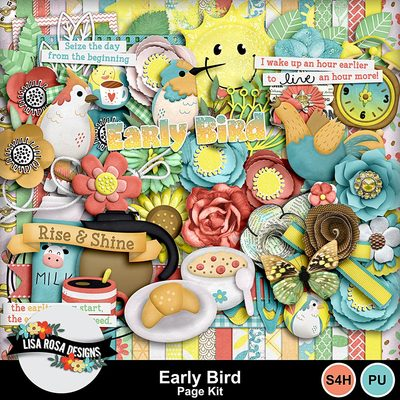 Lisarosadesigns_earlybird_pagekit