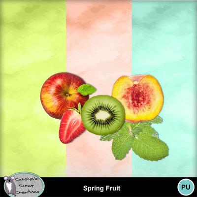 Csc_spring_fruit_