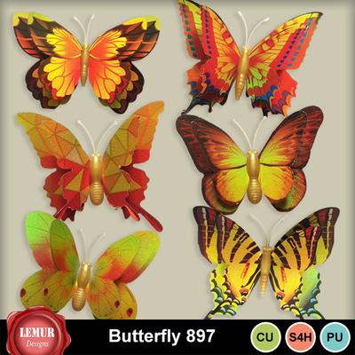 Butterfly_897