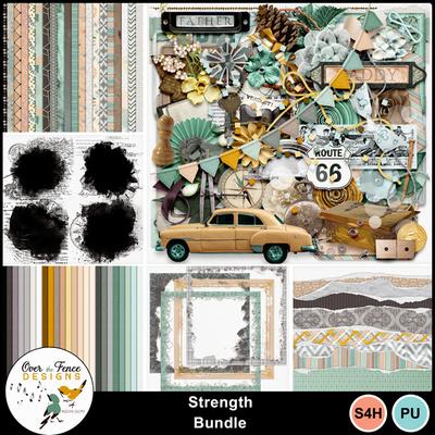 Strength_bundle