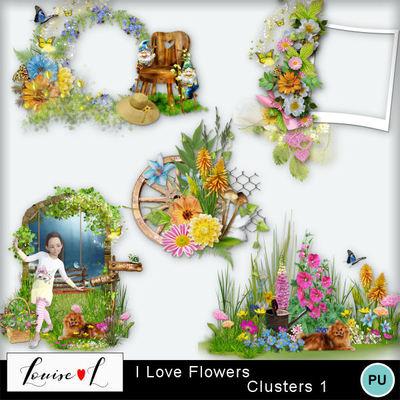 Louisel_i_love_flowers_clusters1_prv