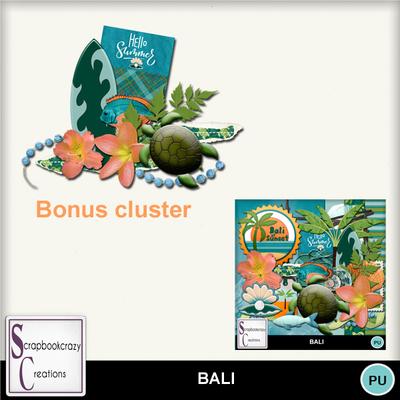 Scr-bali-bonuscl01mm