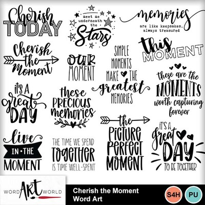 Cherish_the_moment_word_art