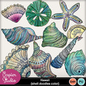 Hawaii_shell_doodles_color_small
