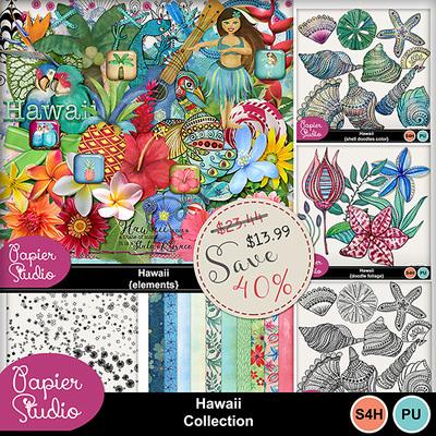 Hawaii_bundle_pv1-copy