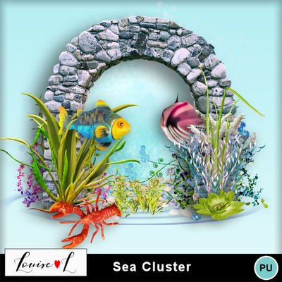 Louisel_cluster_sea_pv