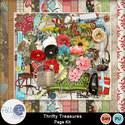 Pbs_thrifty_treasures_pkall_small