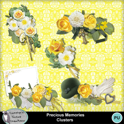 Csc_precious_memories_cluster_wi