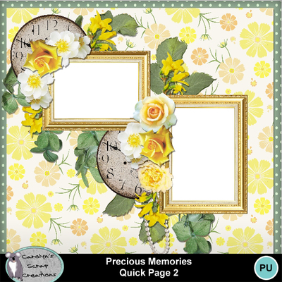 Csc_precious_memories_qp_2_wi_