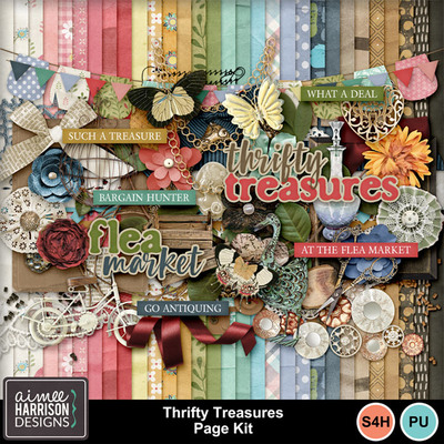 Aimeeh_thriftytreasures_kit